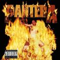 PANTERA: REINVENTING THE STEEL (180 GRAM) - LP