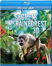 secrets rainforest