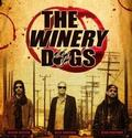 WINERY DOGS: THE WINERY DOGS - 2LP