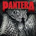 PANTERA: THE GREAT SOUTHERN OUTTAKES - LP