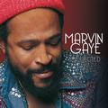 GAYE MARVIN: COLLECTED (180 GRAM) - 2LP