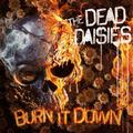 DEAD DAISIES: BURN IT DOWN (LTD.) (180 GRAM) (LP+CD) - LP