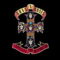 GUNS N' ROSES - APPETITE FOR DESTRUCTION (2018, REMASTER)