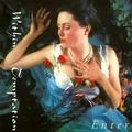 WITHIN TEMPTATION: ENTER (180 GRAM) - LP