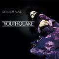 DEAD OR ALIVE: YOUTHQUAKE (180 GRAM) - LP