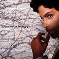 PRINCE: MUSICOLOGY (LTD. COLOURED) - 2LP