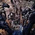 SUFFOCATION: SOULS TO DENY (180 GRAM) - LP