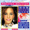 HOUSTON WHITNEY: HOW WILL I KNOW (12
