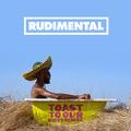 RUDIMENTAL: TOAST TO OUR DIFFERENCES - 2LP