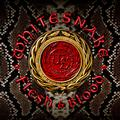 WHITESNAKE: FLESH & BLOOD (180 GRAM) - 2LP