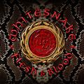 WHITESNAKE - FLESH & BLOOD (LTD.) (CD+DVD)