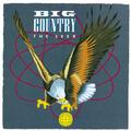 BIG COUNTRY: THE SEER (EXPANDED EDITION) (180 GRAM) - 2LP