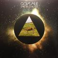 GOV'T MULE: DARK SIDE OF THE MULE (180 GRAM) - 2LP