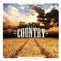 CESKE COUNTRY HITY (2CD)