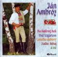 AMBROZ JAN - NA KRALOVEJ HOLI